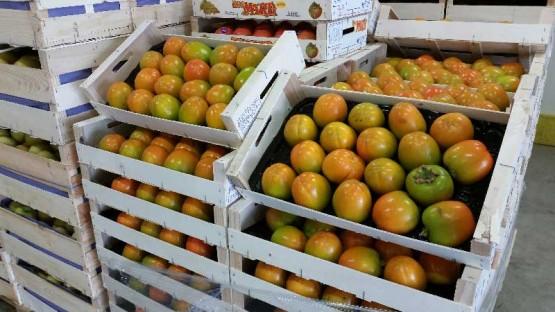 kaki-pomme-colis-dalifruits